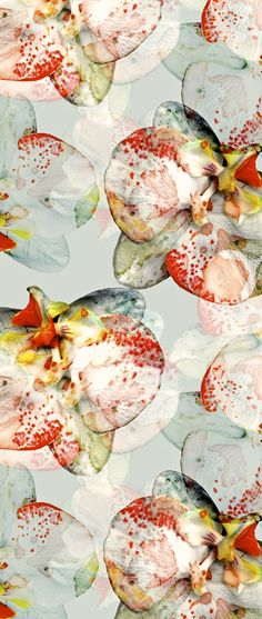 Floral patterns from cayenablanca.com