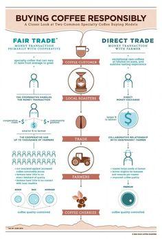 #specialtycoffee #fairtrade #directtrade #coffeefarm
