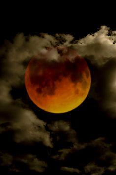tulip night — tulipnight: Red Moon by Rolando Felizola, April...