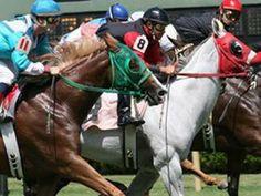 Harrah's Louisiana Downs Announces Its 2019 Quarter Horse ...