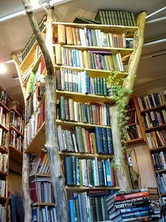 its a tree bookshelf!!!  let's make a FOREST OF BOOKS!!!!!!