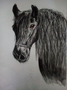 🐎 Horse