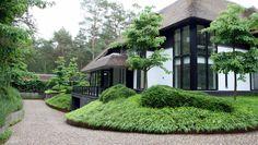 Japanese grasses - Pieter Hessels Landscape Design