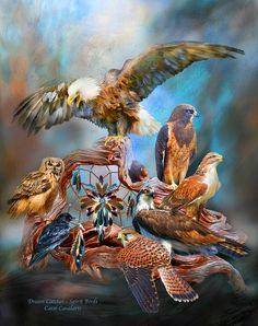 Dream Catcher - Spirit Birds by Carol Cavalaris