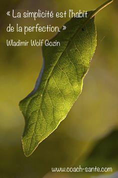 """Wladimir Wolf Gozin """"La simplicité est l'habit de la perfection"""""""