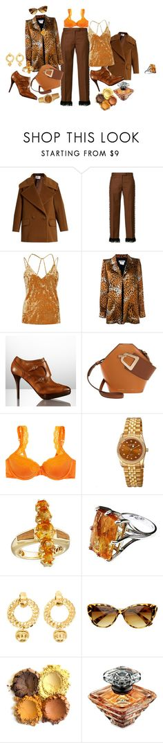 """""""Chances are you can do it all by yourself"""" by blujay1126 ❤ liked on Polyvore featuring MaxMara, Marco de Vincenzo, River Island, Yves Saint Laurent, Ralph Lauren Collection, Danse Lente, STELLA McCARTNEY, August Steiner, Silvia Furmanovich and Chanel"""