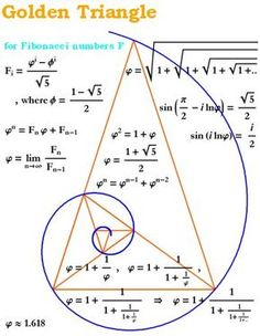 The Golden Ratio in a Spiral and Triangle (Fibonacci Numbers, Geometry) Golden Ration, Divine Proportion, Pseudo Science, Science Art, Fibonacci Spiral, Fibonacci Number, Fibonacci Tattoo, E Mc2, Math Art