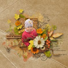~~ Pieces of Autumn ~~ by Palvinka Designs http://www.thedigichick.com/shop/Pieces-Of-Autumn-Collection.html