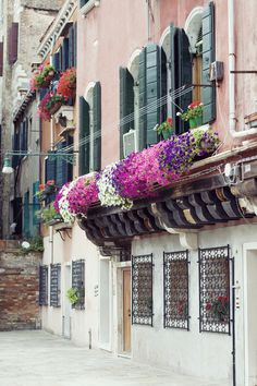 flower boxes in venice, italy