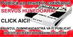 Nicolae Guță, snopit în bătaie la Petroșani - Servus Hunedoara Signs, Shop Signs, Sign, Signage, Dishes