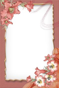 Boarder Designs, Page Borders Design, Frame Background, Paper Background, Photo Png, Wedding Invitation Background, Boarders And Frames, Family Photo Frames, Birthday Frames