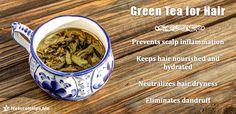 #Green #tea benefits for Hair  #nature #health #remedies #herbal #Organic #homemade #mask #natural #beauty
