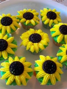 I'll make these for the reception... :) Oreo sunflower cupcakes