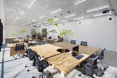 schemata architects brings plant life into tokyo office space all images © kenta hasegawa Landscape Architecture Design, Sustainable Architecture, Interior Architecture, New York Office, Japanese Home Decor, Modern Office Design, Interior Decorating, Interior Design, Design Art