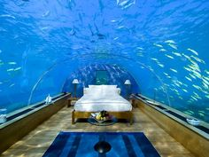 The Underwater Bedroom in the Maldives - perhaps an idea for a crazy guestroom ha...