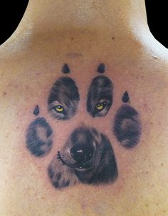 Wolf Face in the Paw Print