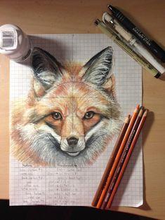 fox pencil - Powered by: Animal Drawings, Cool Drawings, Pencil Drawings, Fox Art, Coloured Pencils, Color Pencil Art, Wildlife Art, Artist Art, Art Techniques