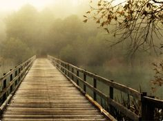 To walk on a murky bridge would be most daring