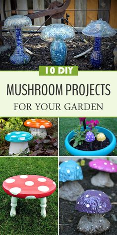 10 Amazing DIY Mushroom Projects for Your Garden →