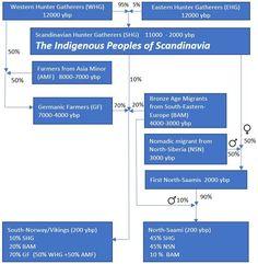 Saami DNA  Saami genetic origin Western Hunter, Hunter Gatherer, My Heritage, Bronze Age, Genetics, Scandinavian, Europe, Dna, The Originals