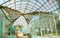 Greenhouses garden (Paris) Auteuil