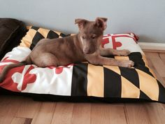 Maryland Flag Dog Bed Cover by foryourloveofdogs on Etsy