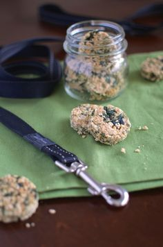 Easy Homemade Dog Treats Spinach and Oatmeal Bars