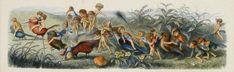The Antiquarium - Antique Print & Map Gallery - Richard Doyle - Trailing the Procession - Color engraving