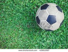 Top view of Football on grass background.Euro 2016 Concept