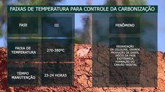 SOLO - FERTILIZANTES - CARVÃO - PRODUÇÃO SUSTENTÁVEL DE CARVÃO VEGETAL NO BRASIL