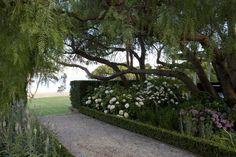 Paul Bangay, Geelong 1 - it just gets better. Tropical Landscaping, Garden Design, Country Gardening, Garden Planters, Plants Under Trees, Landscape Design, Outdoor Gardens, Dream Garden, Landscape
