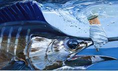 Paul McPhee Catch and Release Marlin Salt Water Fish, Salt And Water, Marlin Azul, Nova Southeastern University, Wood Fish, Marine Conservation, Sea Art, Fish Art, Art Gallery