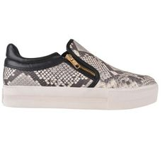 Ash Jordy Slip On Trainers ($89) ❤ liked on Polyvore featuring shoes, sneakers, snake print, python sneakers, snake print sneakers, ash shoes, pull on sneakers and slip-on shoes