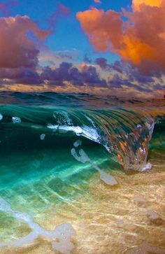 Rainbow Curl Photo by Danny Sepkowski — National Geographic Your Shot