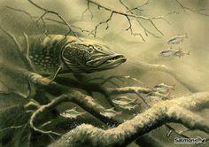 Ароматная приманка для щуки   В этой статье я хочу рассказать об интересном способе ловли щуки на морскую рыбу. Такой ловлей я занимаюсь уже довольно давно, хочу поделиться с читателями своими наблюдениями и открытиями, своим опытом.  В самом начале хочу объяснить, почему щука – исконный обитатель пресноводных водоемов, ловится на совершенно незнакомую ей приманку - морскую рыбу. Что заставляет щуку вообще обращать внимание на приманку, неестественную для местных условий, с неизвестным…