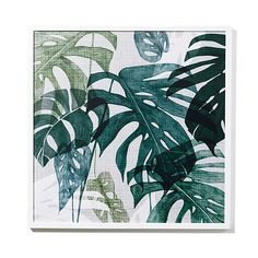 Home Republic - Tribal Gathering Print Monstera 70x70cm – Homewares Wall Art…