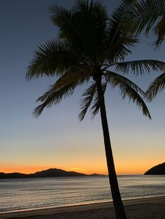 Hamilton Island, June, Celestial, Outdoor, Outdoors, Outdoor Living, Garden