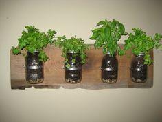 Made my own wall garden on reclaimed bkack walnut