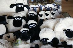 Life's a treat with Shaun the Sheep :)    www.sheeptight.com