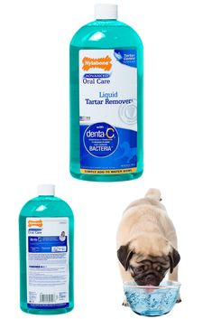 Nylabone Advanced Oral Care Liquid Tartar Remover|dog dental care products|dog dental care products|dog dental care cost|dog dental care at home|pet dental#storeforpet Tartar Removal, Dog Dental Care, R Dogs, Peta, Pet Supplies, How To Remove, Personal Care, Natural, Products