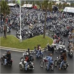 Harley Road King Custom Harleys Pinterest And Thunder Beach Motorcycle Rally At Panama City