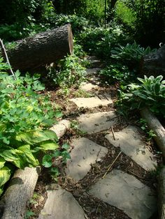 Add interesting trails to your garden to make it fun and mysterious....