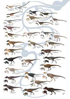 Tyrannosauroid Dinosaurs Version 1 by Kana-hebi on DeviantArt