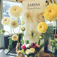 В бутике Zarina выросли огромные ранункулюсы и впечатлили своей красотой гостей. Ну а мы только рады #ранункулюсы#огромныецветы#большиецветы#ювелирныйбутик#цветы#ранункулюсы#бумажныецветы#красота#zarina#flowers#ranunculus#giantflowers#paperart#creative_decor#handmade#crafts#bigflowers