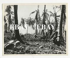 Vintage WWII Battle Photo of Leyte Philippines WW2 MacArthur 1st Cavalry Div