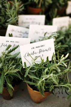 Avem cele mai creative idei pentru nunta ta!: #547