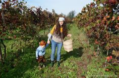 """""""La Vendemmia"""" - The Italian Vintage - Reasons to Dress.  A great thing to do with kids in Italy is to go wine grape picking during the Vintage in September / October.  This will remain one of my favorite memories of all time."""