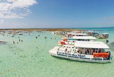 Os tons de água esverdeadas e a grande barreira de corais que vai do litoral norte de Alagoas até as praias do Sul de Pernambuco, estado vizinho, atrai viajantes que querem desfrutar das paisagens paradisíacas que compõem essa costa do nordeste brasileiro.