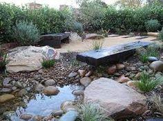 Garden Ideas Australian Native black boys surroundedlomandra tanika and native grasses with
