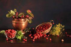 Crabapples And Wild Strawberries | by panga_ua